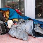 Homeless enhanced-buzz-10482-1282064349-12--FB 7-27-14, 11-27-14, 12-26-14, 2-1-15, 11-11-15, 11-26-15